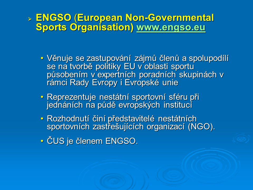  koordinují rozvoj svého sportovního odvětví v rámci Evropy  hájí zájmy svého sportovního odvětví v evropském sportovním prostředí  pořádají soutěže na úrovni Evropy  organizují vlastní marketing + Zájmové (oborové) sportovní federace  sportovní zboží, zaměstnanost, vzdělávání ve sportu, … Evropské sportovní federace