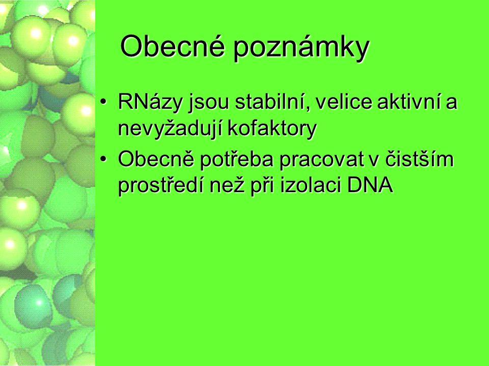 Obecné poznámky RNázy jsou stabilní, velice aktivní a nevyžadují kofaktoryRNázy jsou stabilní, velice aktivní a nevyžadují kofaktory Obecně potřeba pr