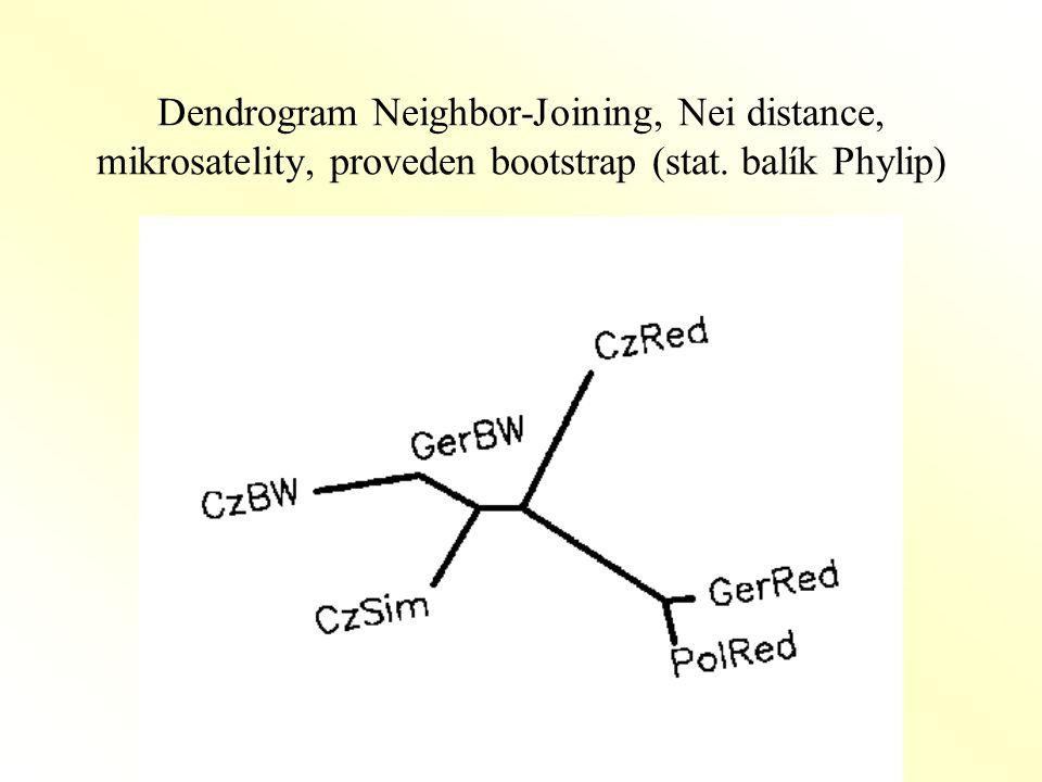 Dendrogram Neighbor-Joining, Nei distance, mikrosatelity, proveden bootstrap (stat. balík Phylip)