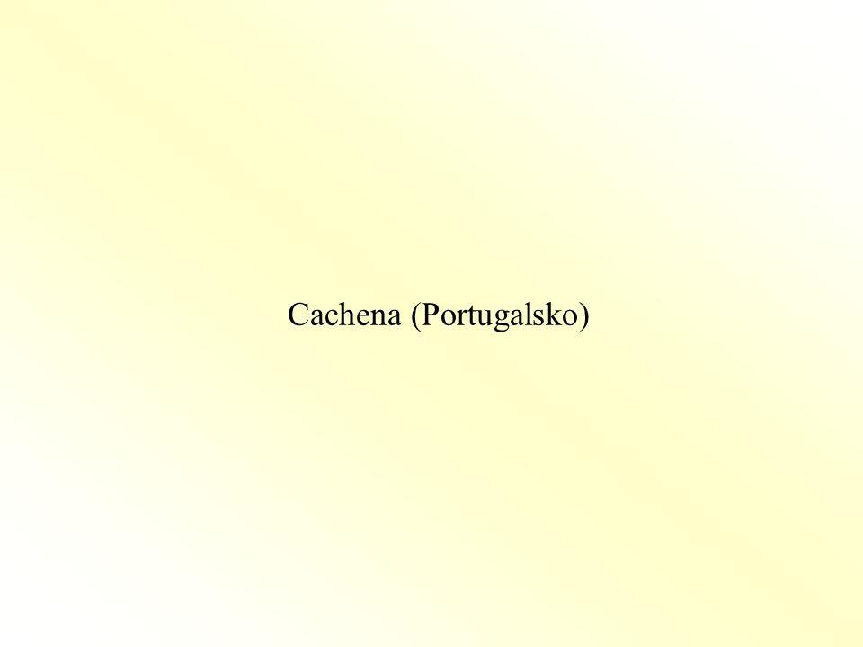 Cachena (Portugalsko)