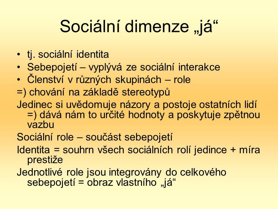 """Sociální dimenze """"já tj."""
