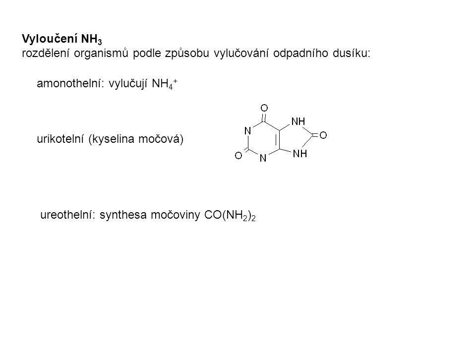 Vyloučení NH 3 rozdělení organismů podle způsobu vylučování odpadního dusíku: urikotelní (kyselina močová) amonothelní: vylučují NH 4 + ureothelní: sy