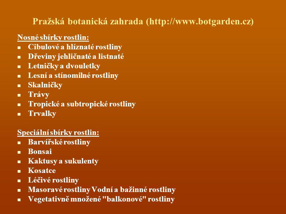 Pražská botanická zahrada (http://www.botgarden.cz) Nosné sbírky rostlin: Cibulové a hlíznaté rostliny Dřeviny jehličnaté a listnaté Letničky a dvouletky Lesní a stínomilné rostliny Skalničky Trávy Tropické a subtropické rostliny Trvalky Speciální sbírky rostlin: Barvířské rostliny Bonsai Kaktusy a sukulenty Kosatce Léčivé rostliny Masoravé rostliny Vodní a bažinné rostliny Vegetativně množené balkonové rostliny
