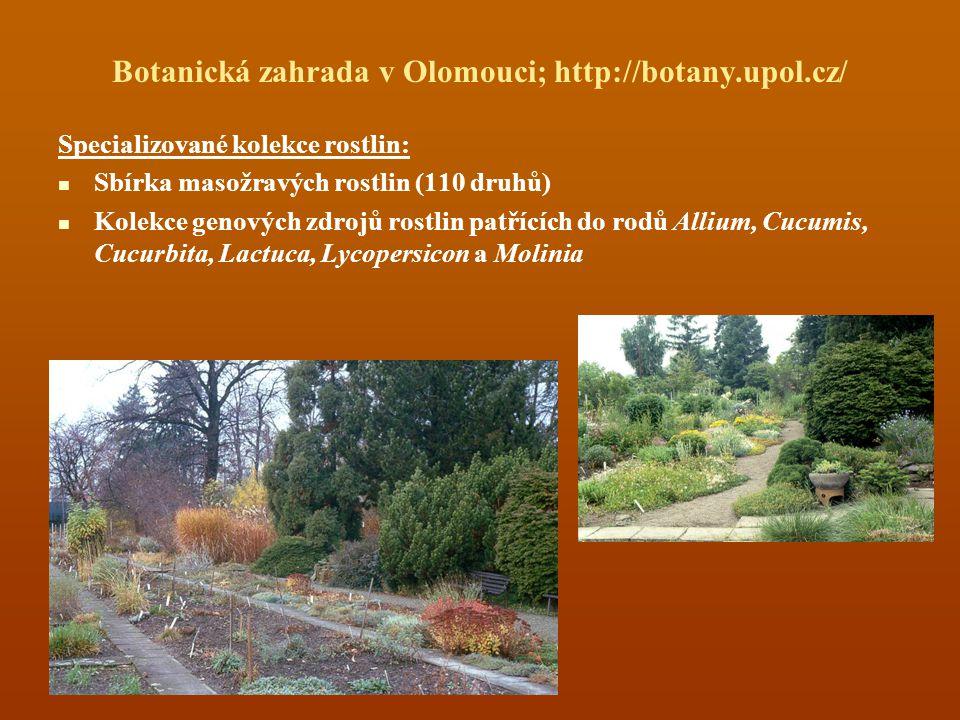 Botanická zahrada v Olomouci; http://botany.upol.cz/ Specializované kolekce rostlin: Sbírka masožravých rostlin (110 druhů) Kolekce genových zdrojů rostlin patřících do rodů Allium, Cucumis, Cucurbita, Lactuca, Lycopersicon a Molinia