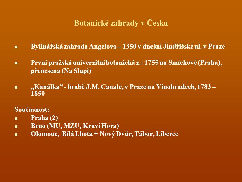 Botanické zahrady v Česku Bylinářská zahrada Angelova – 1350 v dnešní Jindřišské ul. v Praze První pražská univerzitní botanická z.: 1755 na Smíchově