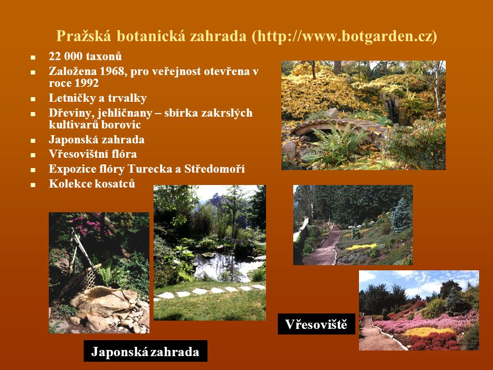Pražská botanická zahrada (http://www.botgarden.cz) 22 000 taxonů Založena 1968, pro veřejnost otevřena v roce 1992 Letničky a trvalky Dřeviny, jehličnany – sbírka zakrslých kultivarů borovic Japonská zahrada Vřesovištní flóra Expozice flóry Turecka a Středomoří Kolekce kosatců Japonská zahrada Pohled na vřesoviště Vřesoviště