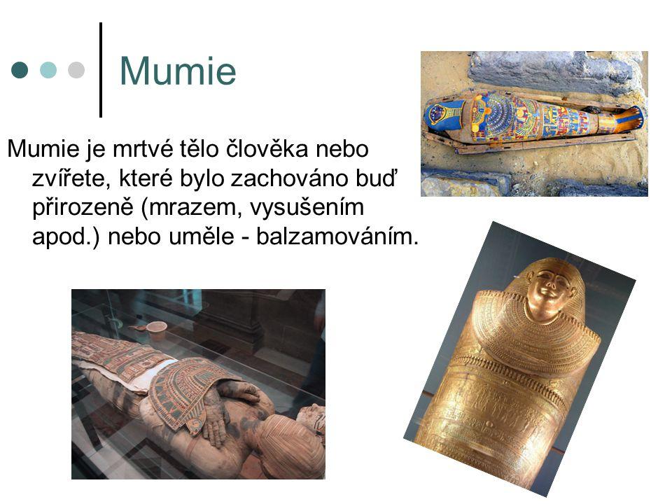 Mumie Mumie je mrtvé tělo člověka nebo zvířete, které bylo zachováno buď přirozeně (mrazem, vysušením apod.) nebo uměle - balzamováním.