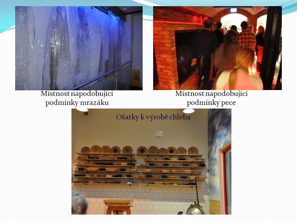 Místnost napodobující podmínky mrazáku Místnost napodobující podmínky pece Ošatky k výrobě chleba