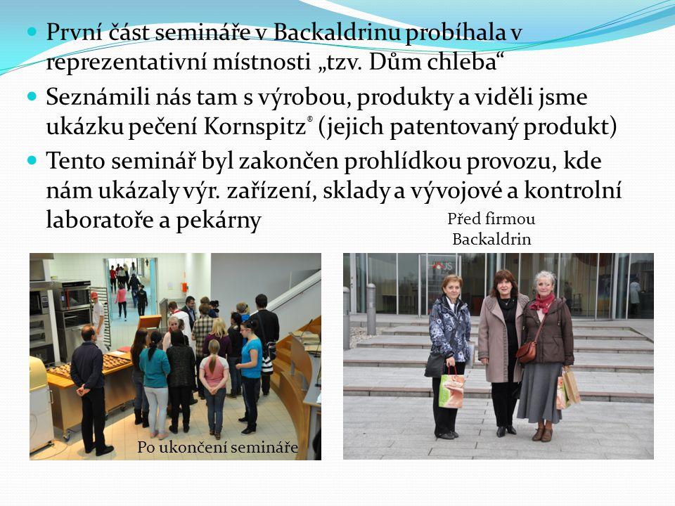 """První část semináře v Backaldrinu probíhala v reprezentativní místnosti """"tzv."""