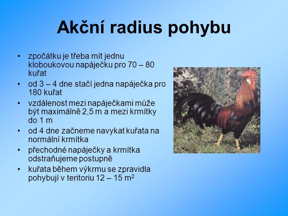 Akční radius pohybu zpočátku je třeba mít jednu kloboukovou napáječku pro 70 – 80 kuřat od 3 – 4 dne stačí jedna napáječka pro 180 kuřat vzdálenost me