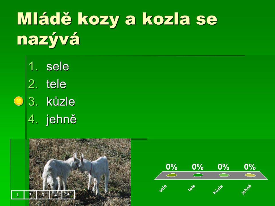 Mládě kozy a kozla se nazývá 1.sele 2.tele 3.kůzle 4.jehně 12345
