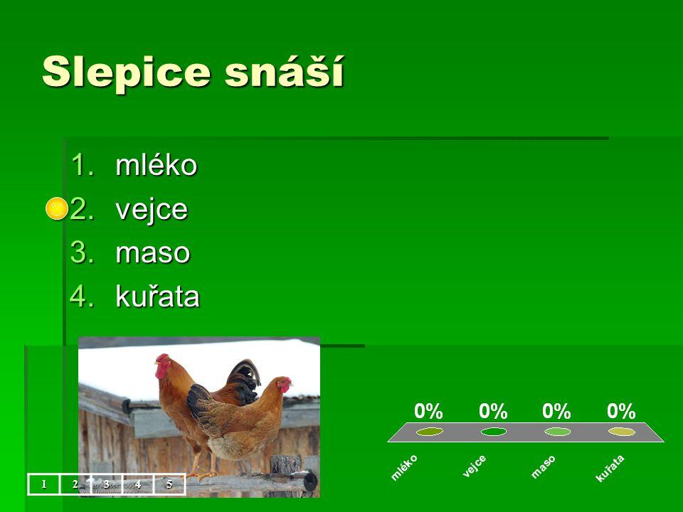 Slepice snáší 1.mléko 2.vejce 3.maso 4.kuřata 12345