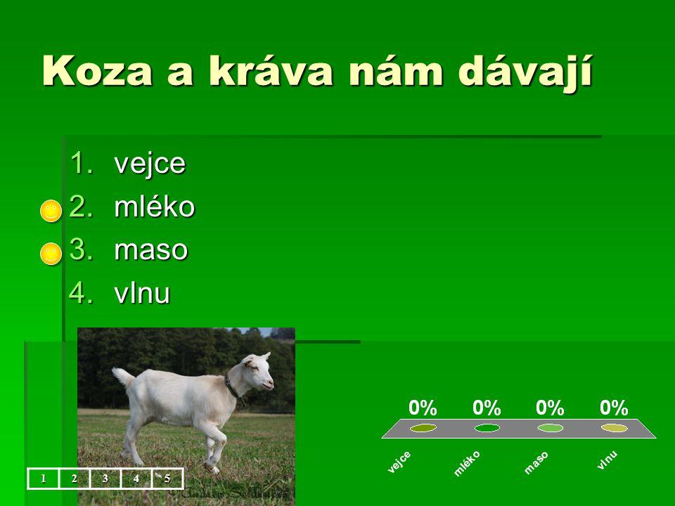 Koza a kráva nám dávají 1.vejce 2.mléko 3.maso 4.vlnu 12345