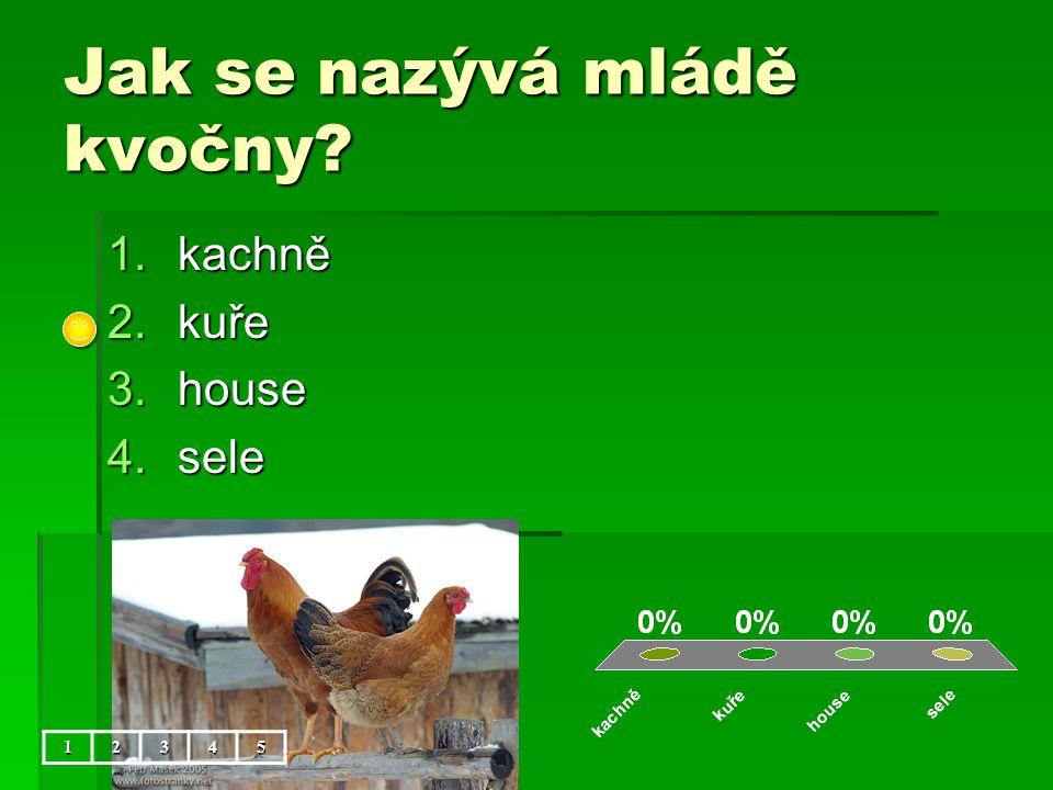Jak se nazývá mládě kvočny? 1.kachně 2.kuře 3.house 4.sele 12345