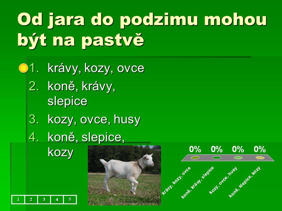 Od jara do podzimu mohou být na pastvě 1.krávy, kozy, ovce 2.koně, krávy, slepice 3.kozy, ovce, husy 4.koně, slepice, kozy 12345