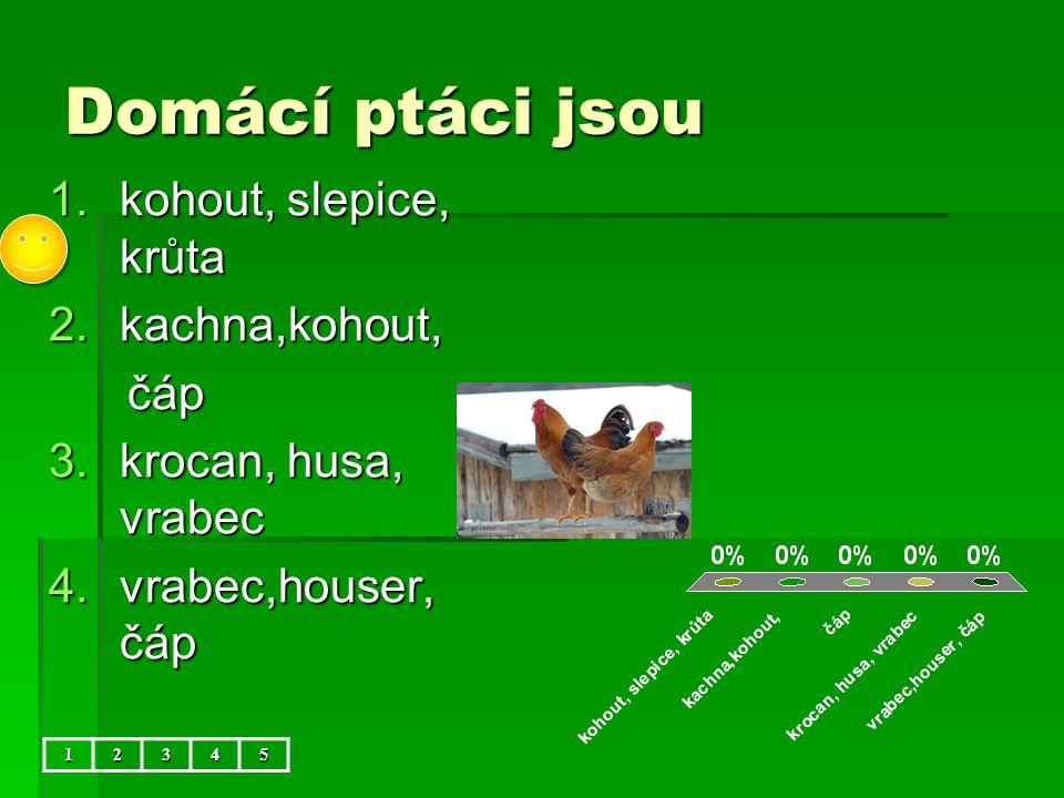 Domácí ptáci jsou 1.kohout, slepice, krůta 2.kachna,kohout, čáp čáp 3.krocan, husa, vrabec 4.vrabec,houser, čáp 12345