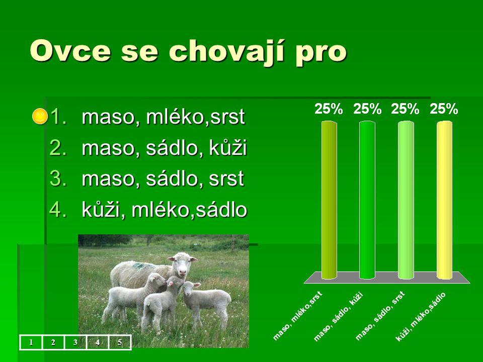 Ovce se chovají pro 12345 1.maso, mléko,srst 2.maso, sádlo, kůži 3.maso, sádlo, srst 4.kůži, mléko,sádlo