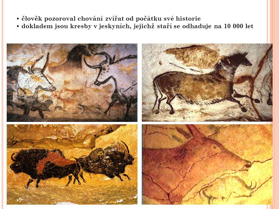 člověk pozoroval chování zvířat od počátku své historie dokladem jsou kresby v jeskyních, jejichž staří se odhaduje na 10 000 let