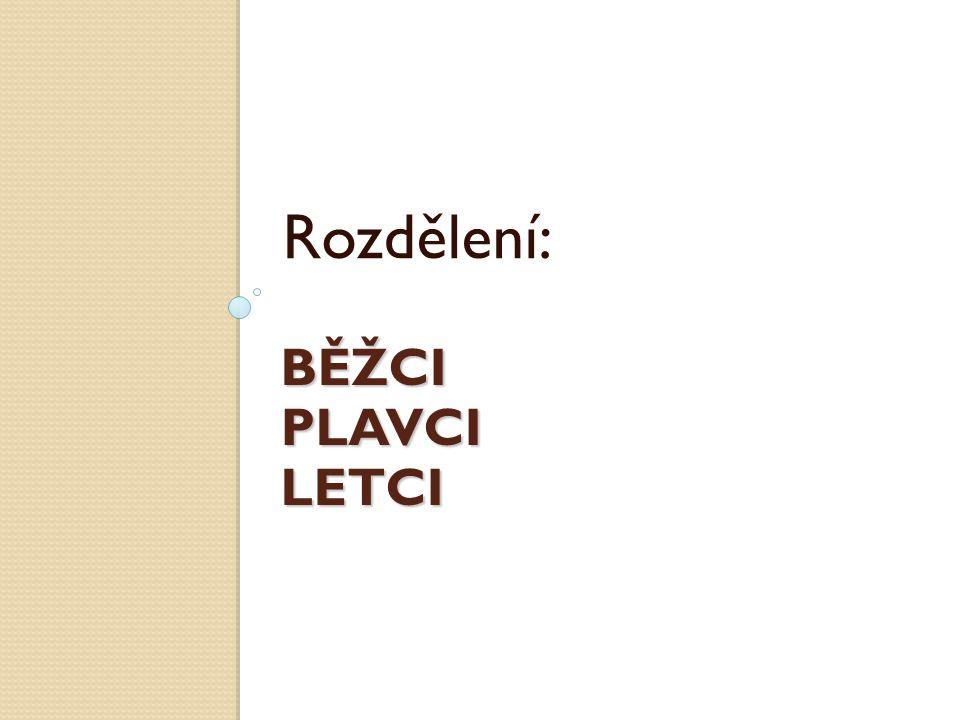 BĚŽCI PLAVCI LETCI Rozdělení: