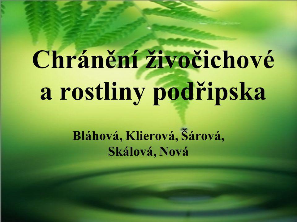 OBLAST Litoměřicko oblast Českého středohoří a dolního Poohří = botanicky nejbohatší místa v České republice