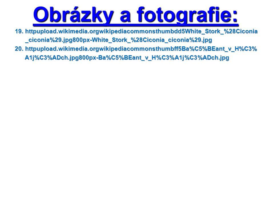 Obrázky a fotografie: 19.