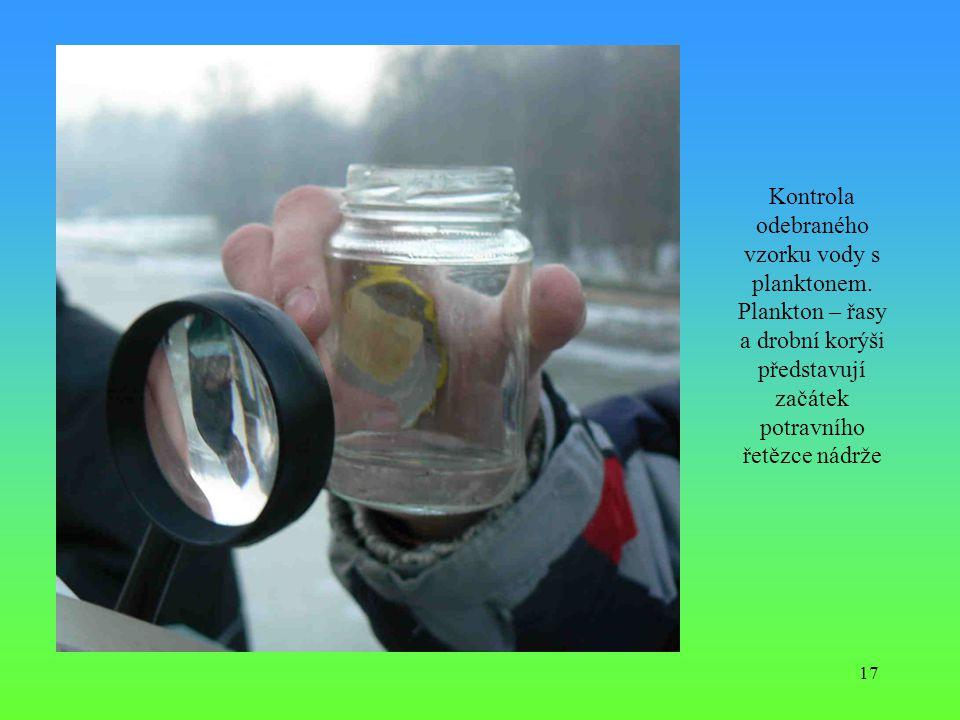 17 Kontrola odebraného vzorku vody s planktonem. Plankton – řasy a drobní korýši představují začátek potravního řetězce nádrže