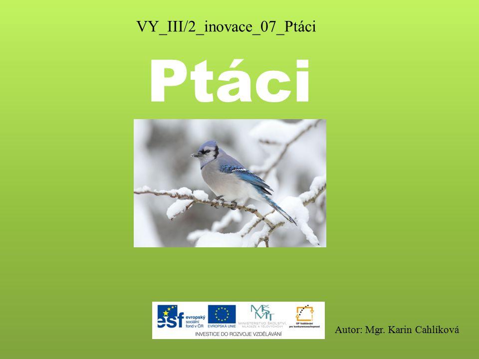 Ptáci VY_III/2_inovace_07_Ptáci Autor: Mgr. Karin Cahlíková