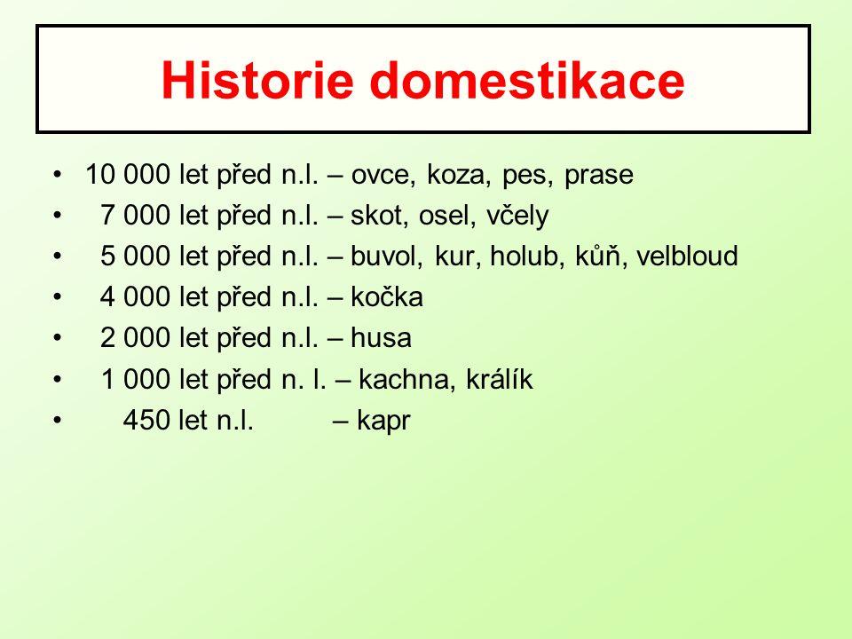 Historie domestikace 10 000 let před n.l.– ovce, koza, pes, prase 7 000 let před n.l.