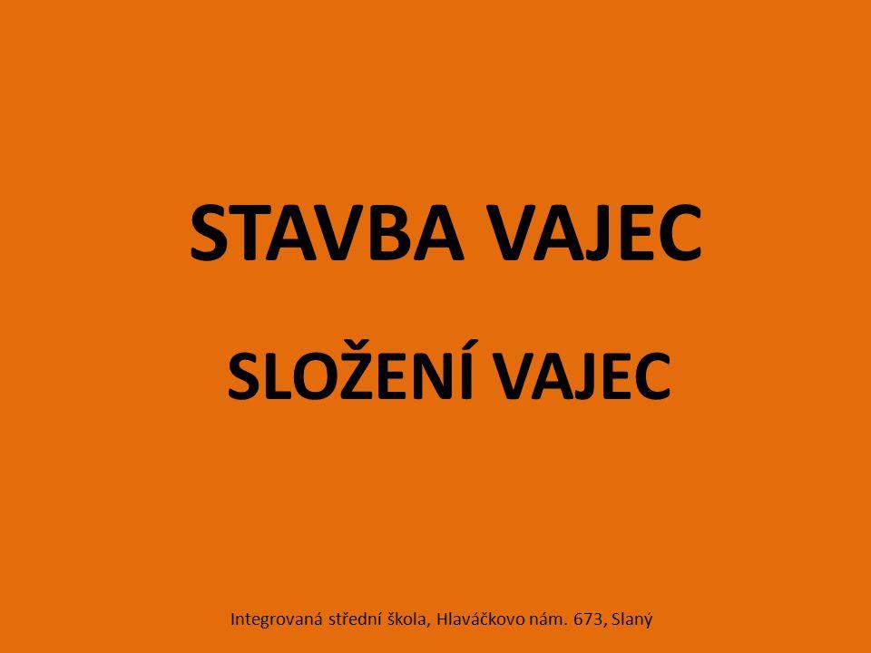 STAVBA VAJEC SLOŽENÍ VAJEC Integrovaná střední škola, Hlaváčkovo nám. 673, Slaný
