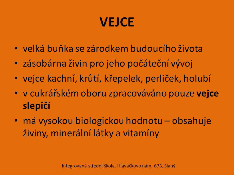 STAVBA VAJEC Integrovaná střední škola, Hlaváčkovo nám. 673, Slaný