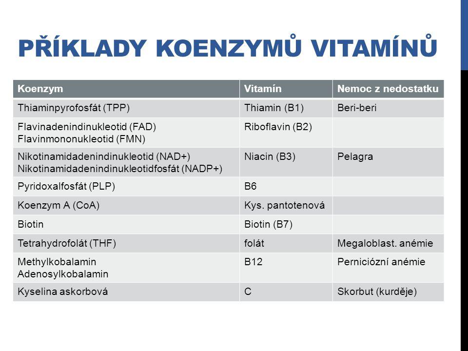 PŘÍKLADY KOENZYMŮ VITAMÍNŮ KoenzymVitamínNemoc z nedostatku Thiaminpyrofosfát (TPP)Thiamin (B1)Beri-beri Flavinadenindinukleotid (FAD) Flavinmononukle