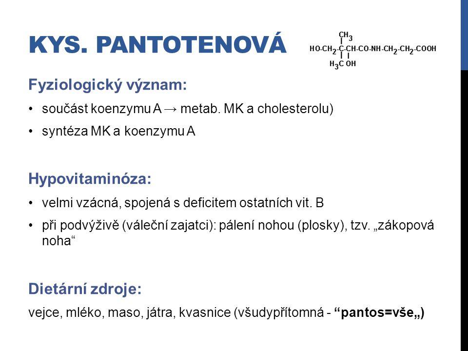 KYS. PANTOTENOVÁ Fyziologický význam: součást koenzymu A → metab. MK a cholesterolu) syntéza MK a koenzymu A Hypovitaminóza: velmi vzácná, spojená s d