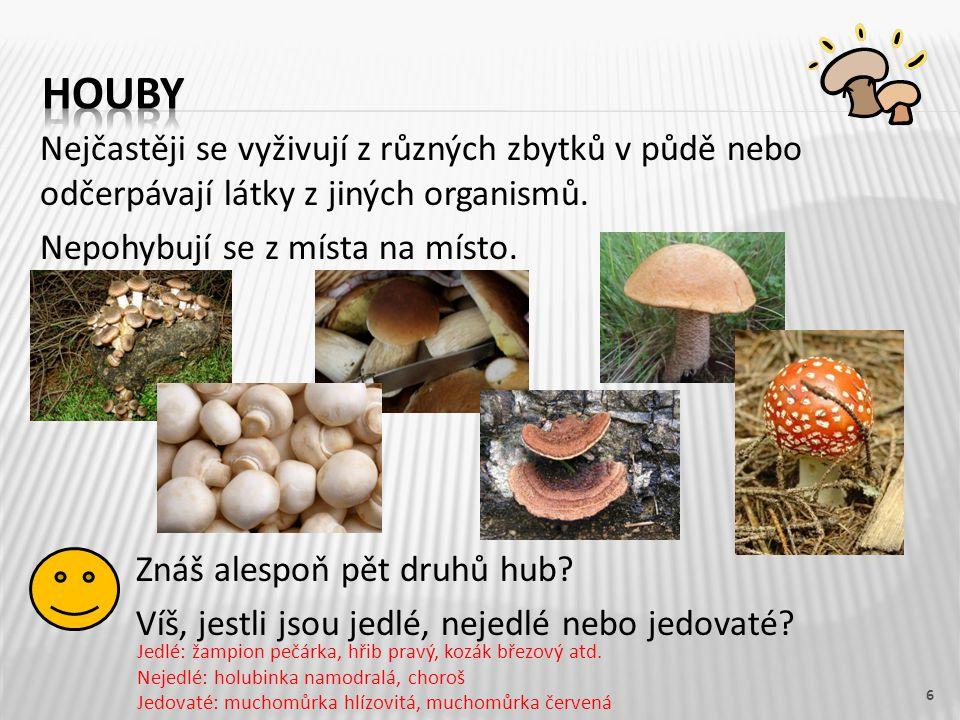 Nejčastěji se vyživují z různých zbytků v půdě nebo odčerpávají látky z jiných organismů. Nepohybují se z místa na místo. Znáš alespoň pět druhů hub?