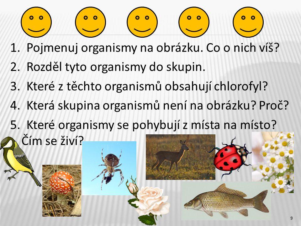 1. Pojmenuj organismy na obrázku. Co o nich víš? 2. Rozděl tyto organismy do skupin. 3. Které z těchto organismů obsahují chlorofyl? 4. Která skupina