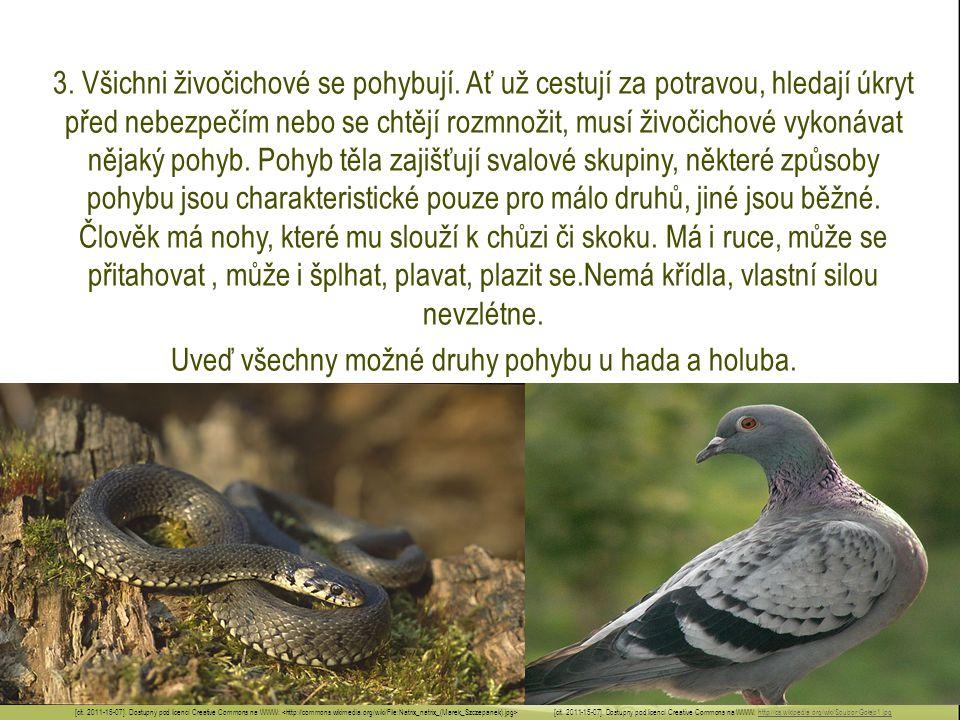 3. Všichni živočichové se pohybují. Ať už cestují za potravou, hledají úkryt před nebezpečím nebo se chtějí rozmnožit, musí živočichové vykonávat něja