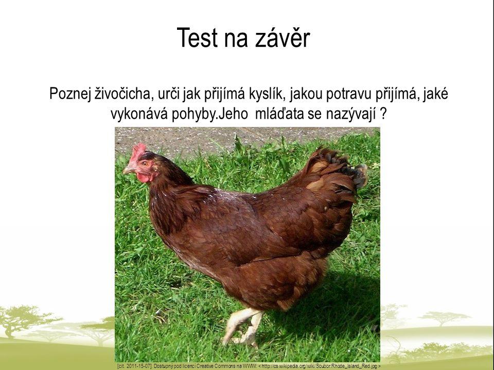 Test na závěr Poznej živočicha, urči jak přijímá kyslík, jakou potravu přijímá, jaké vykonává pohyby.Jeho mláďata se nazývají ? [cit. 2011-15-07]. Dos