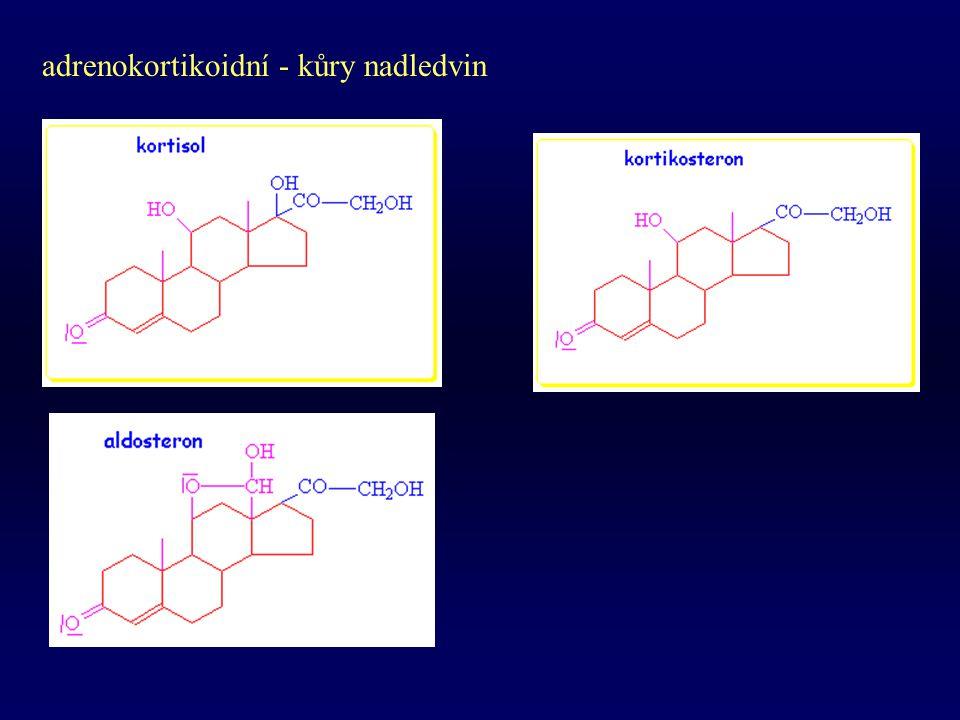adrenokortikoidní - kůry nadledvin