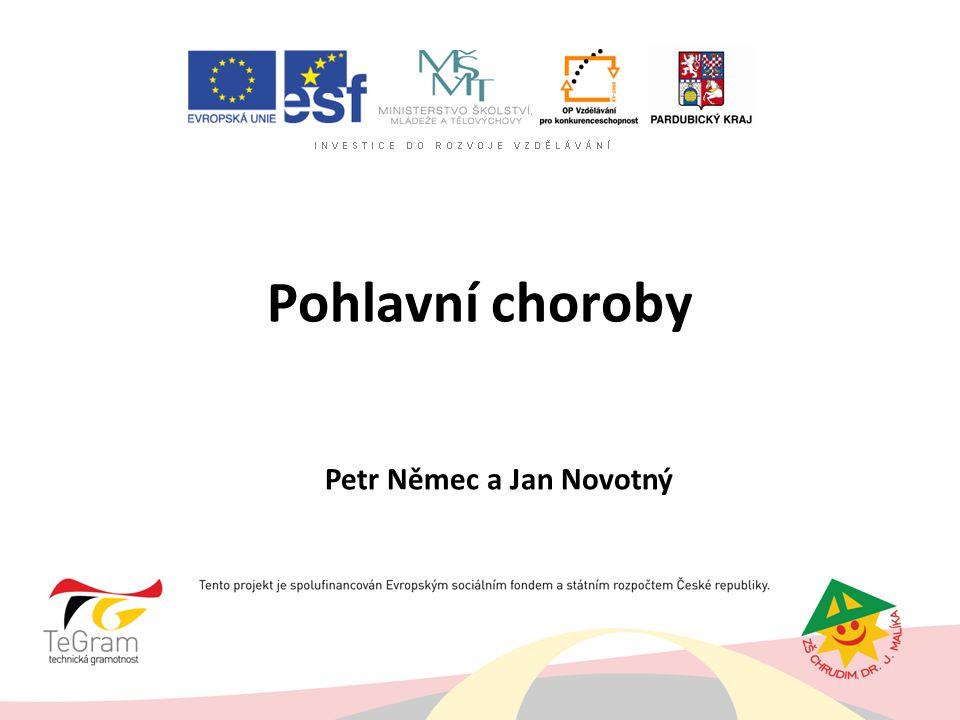 Pohlavní choroby Petr Němec a Jan Novotný