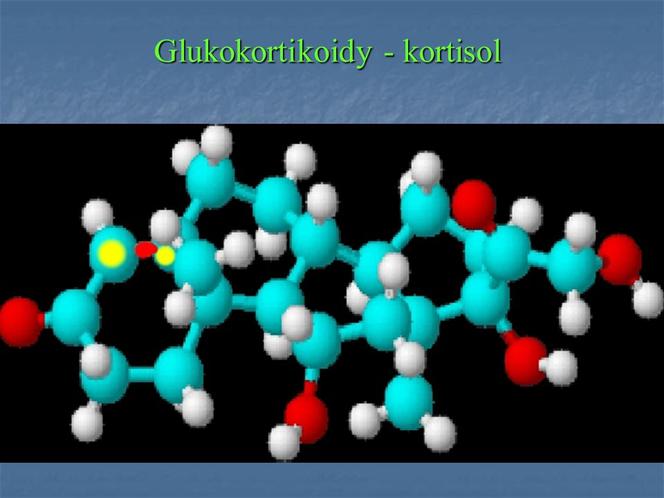 Glukokortikoidy - kortisol