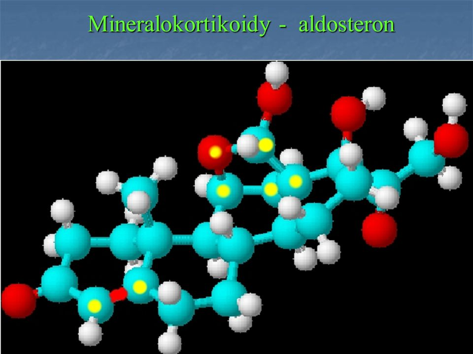 Mineralokortikoidy - aldosteron
