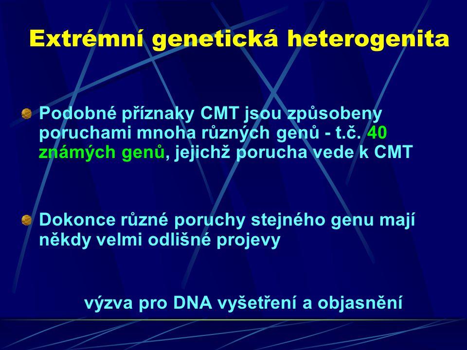 Extrémní genetická heterogenita Podobné příznaky CMT jsou způsobeny poruchami mnoha různých genů - t.č. 40 známých genů, jejichž porucha vede k CMT Do
