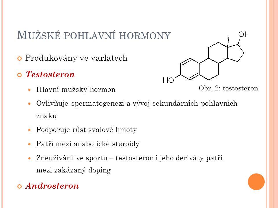 M UŽSKÉ POHLAVNÍ HORMONY Produkovány ve varlatech Testosteron Hlavní mužský hormon Ovlivňuje spermatogenezi a vývoj sekundárních pohlavních znaků Podp