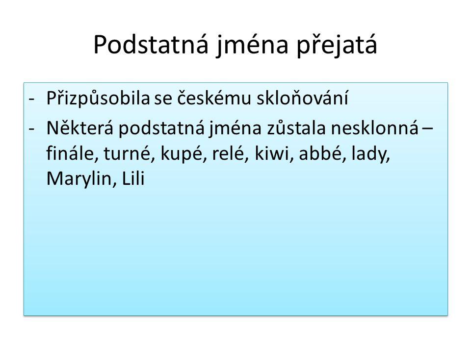 Podstatná jména přejatá -Přizpůsobila se českému skloňování -Některá podstatná jména zůstala nesklonná – finále, turné, kupé, relé, kiwi, abbé, lady, Marylin, Lili -Přizpůsobila se českému skloňování -Některá podstatná jména zůstala nesklonná – finále, turné, kupé, relé, kiwi, abbé, lady, Marylin, Lili