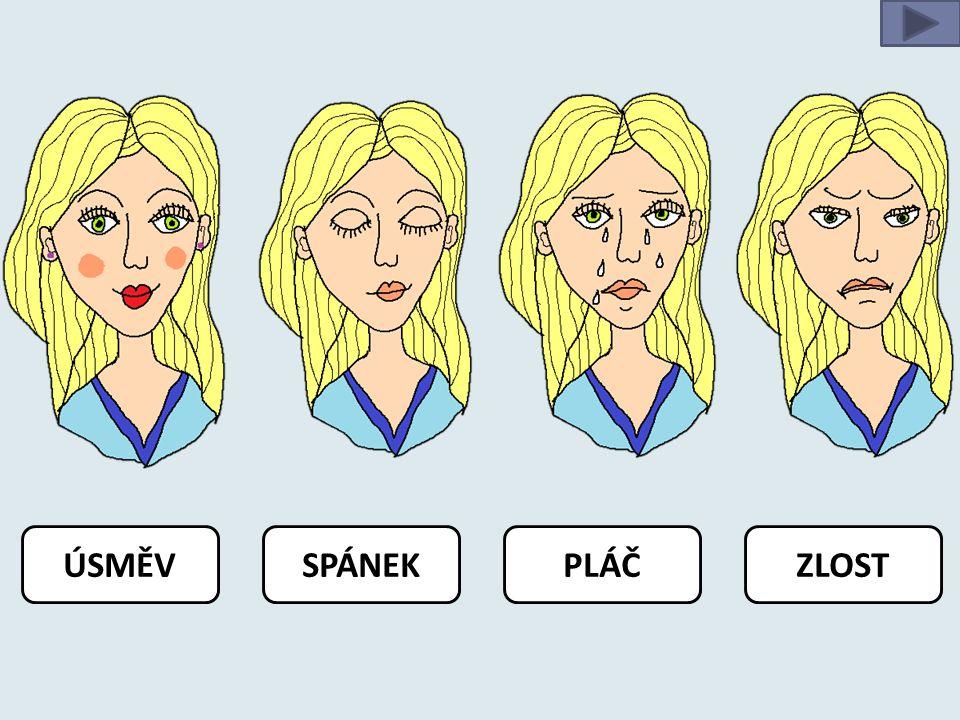 Metodický postup: Hodina: Hlava - obličej Čas: 30 minut 3.