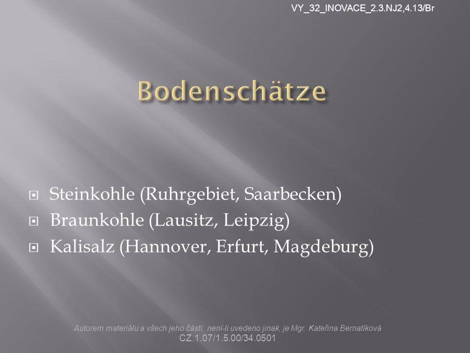  Steinkohle (Ruhrgebiet, Saarbecken)  Braunkohle (Lausitz, Leipzig)  Kalisalz (Hannover, Erfurt, Magdeburg) Autorem materiálu a všech jeho částí, není-li uvedeno jinak, je Mgr.