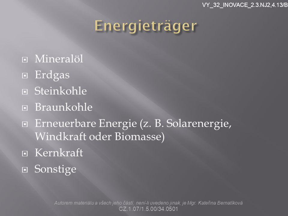  Mineralöl  Erdgas  Steinkohle  Braunkohle  Erneuerbare Energie (z.