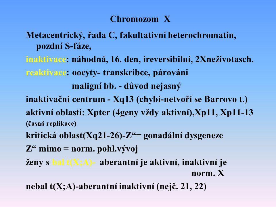 Chromozom X Metacentrický, řada C, fakultativní heterochromatin, pozdní S-fáze, inaktivace: náhodná, 16. den, ireversibilní, 2Xneživotasch. reaktivace