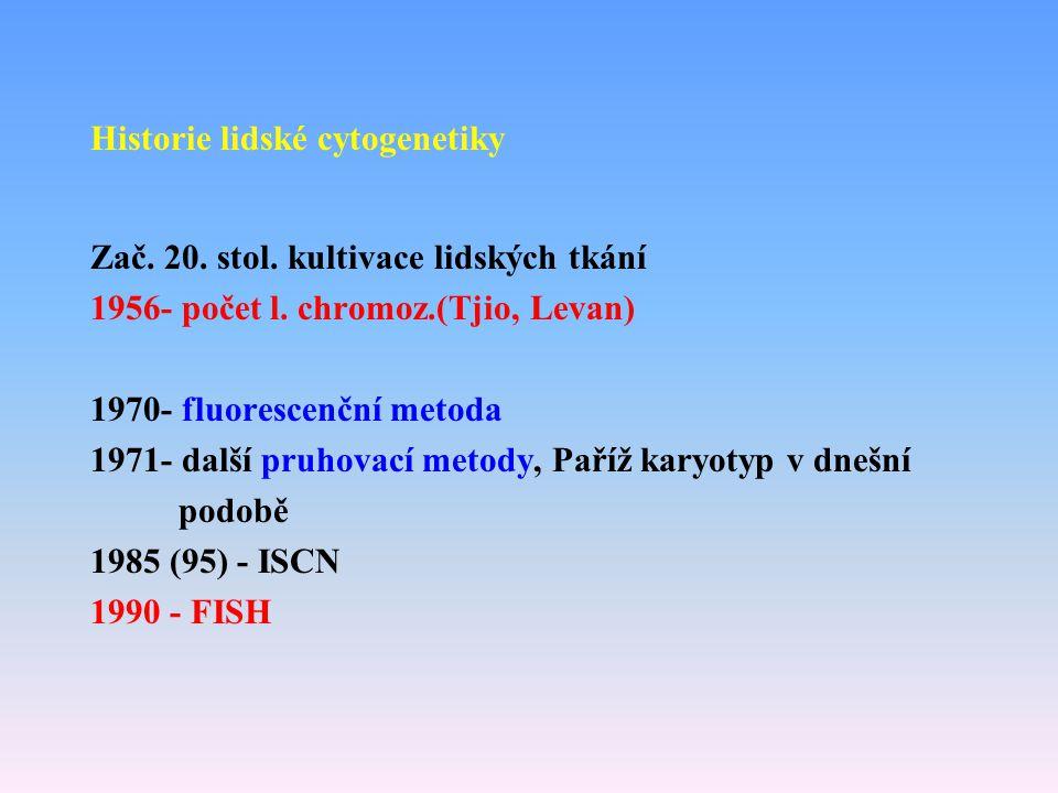 Historie lidské cytogenetiky Zač. 20. stol. kultivace lidských tkání 1956- počet l. chromoz.(Tjio, Levan) 1970- fluorescenční metoda 1971- další pruho