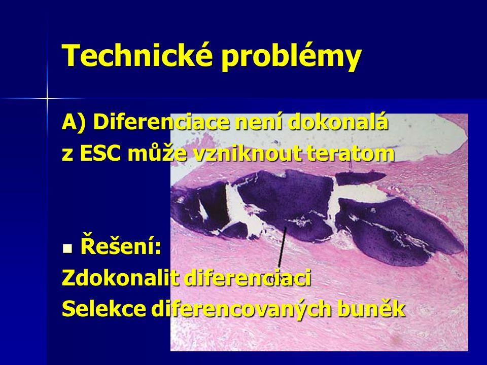 A) Diferenciace není dokonalá z ESC může vzniknout teratom Řešení: Řešení: Zdokonalit diferenciaci Selekce diferencovaných buněk Technické problémy