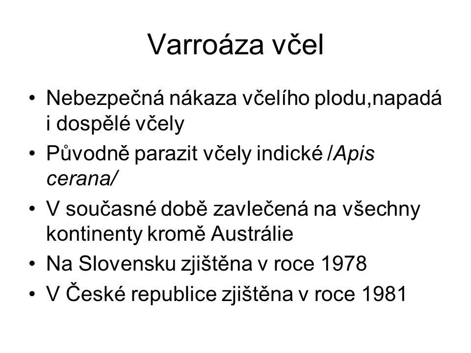 Varroáza včel Nebezpečná nákaza včelího plodu,napadá i dospělé včely Původně parazit včely indické /Apis cerana/ V současné době zavlečená na všechny kontinenty kromě Austrálie Na Slovensku zjištěna v roce 1978 V České republice zjištěna v roce 1981